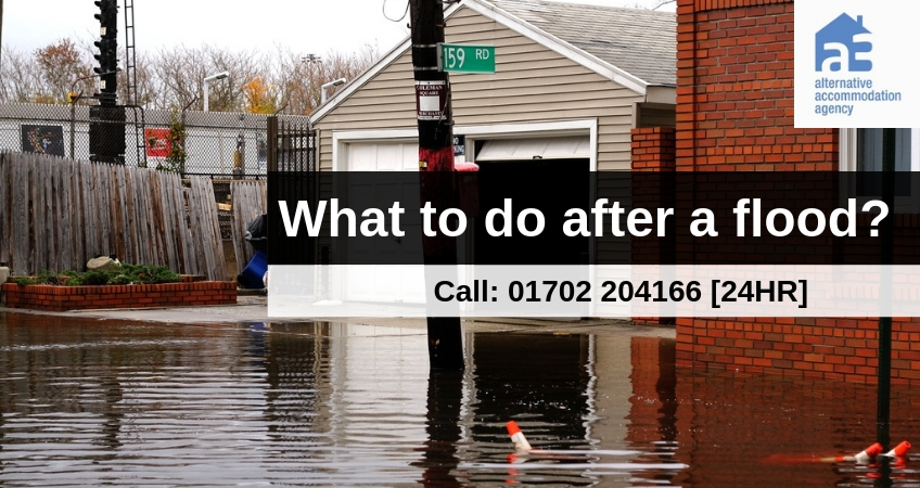 What to Do After a Flood in the UK?